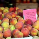 Alleson Borden - Burke Glascocks Freestone Sunbright Peaches